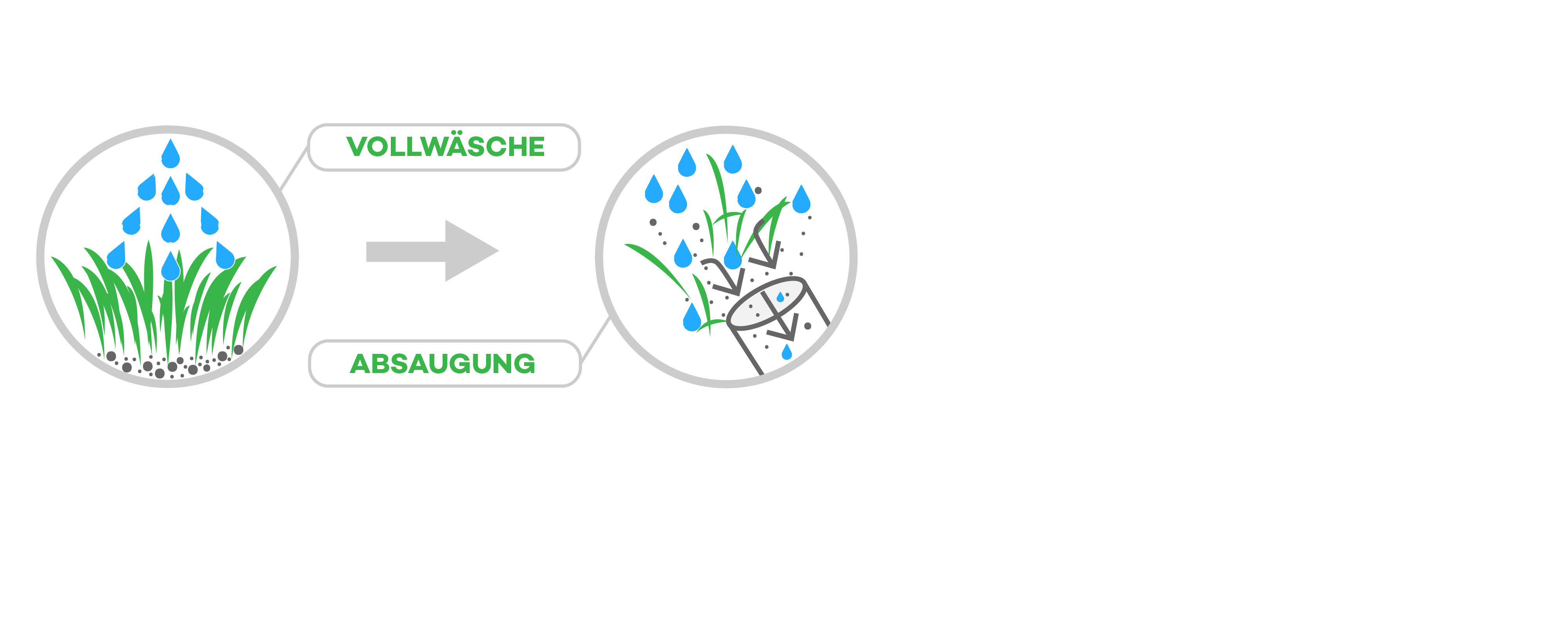 Mit unserer Vollwäsche werden Schadstoffe aus dem Boden gesaugt